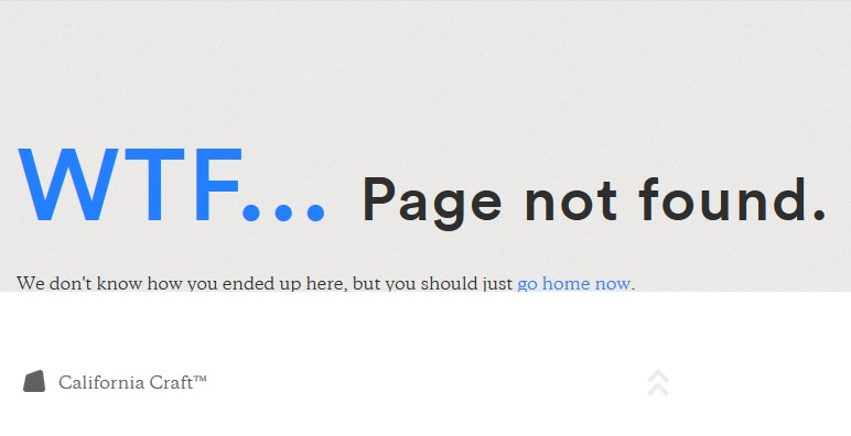 WTF-Page Not Found HTTP Error Page