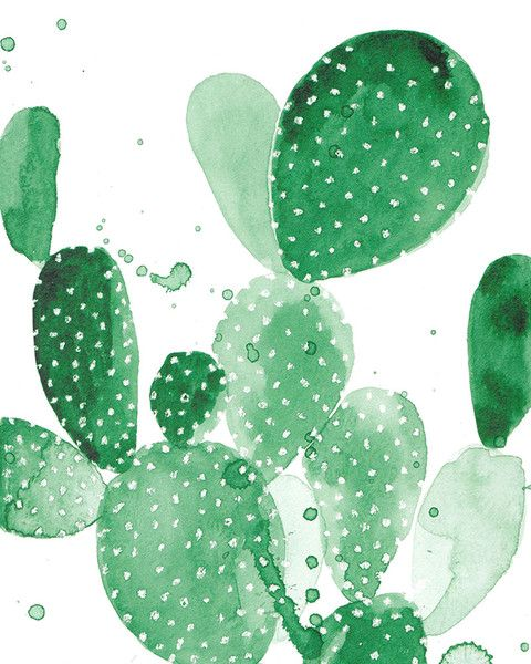 Cactus Wallpaper, Background Image iPhone 5