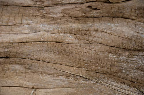 Beach-wood-textures-high-quality-Wooden-Texture-Background-Pattern