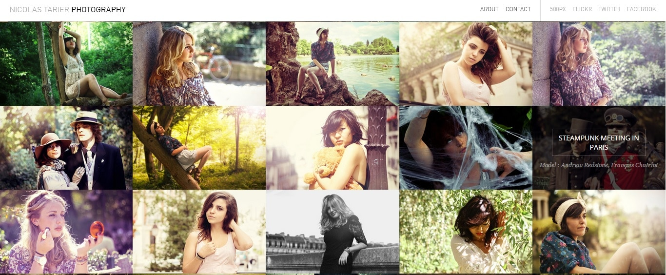 Nicolas Tarier Photography Website Design for Photographer Portfolio