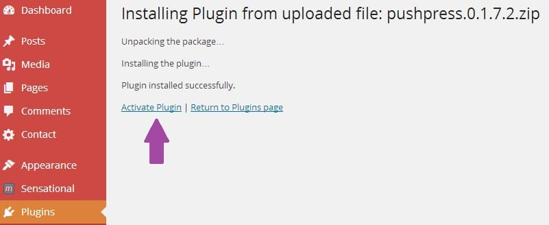 Activate WordPress Plugin After Installation