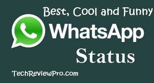 50 Best Whatsapp Status Updates Funny And Cool Statuses