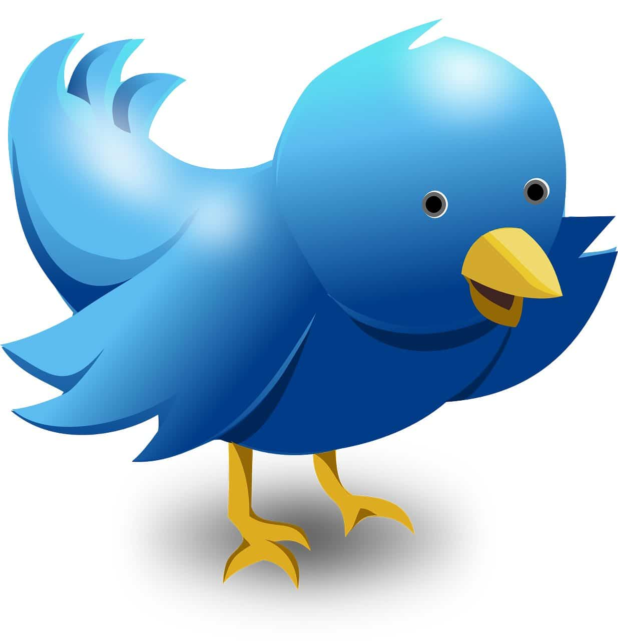 Twitter Tips and Tricks for Launching Business on Twitter