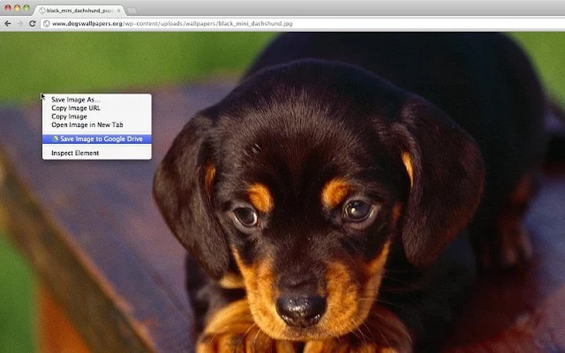 save-to-google-drive - Best Chrome Extensions – Ultimate List of Best Extensions for Chrome Users