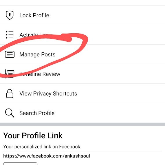 How to Mass Delete All Facebook Posts in Bulk on iPhone?